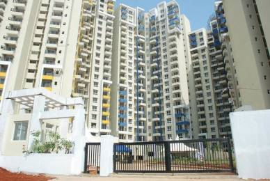 1339 sqft, 2 bhk Apartment in Purva Highland Anjanapura, Bangalore at Rs. 65.0000 Lacs