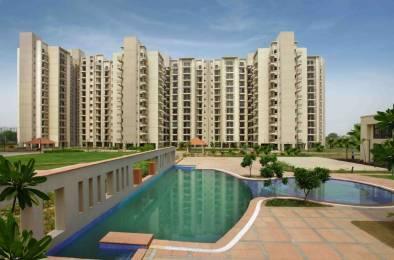1248 sqft, 2 bhk Apartment in Umang Summer Palms Sector 86, Faridabad at Rs. 45.0000 Lacs