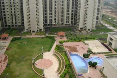 1365 sqft, 3 bhk Apartment in Builder Project New Industrial Township 5, Faridabad at Rs. 62.0000 Lacs