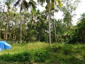 5220 sqft, Plot in Builder Project Thonnakkal Vengode Malamukal Chempoor Road, Trivandrum at Rs. 48.0000 Lacs