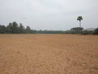 1800 sqft, Plot in Builder PEARL COAST Vizag Srikakulam Highway, Visakhapatnam at Rs. 12.0000 Lacs