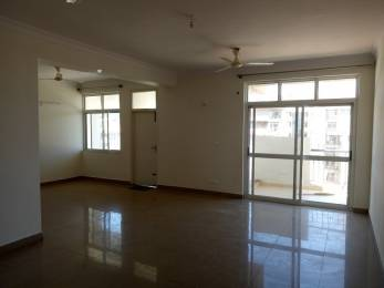 3198 sqft, 4 bhk Apartment in AWHO Sandeep Vihar Kannamangala, Bangalore at Rs. 44000