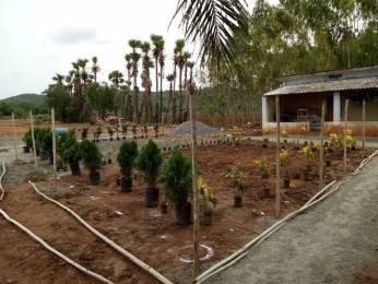 900 sqft, Plot in Builder Amruth Sai Gardens MylavaramKuntamukkalaVellaturuVijayawada Road, Vijayawada at Rs. 4.5000 Lacs