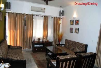 960 sqft, 2 bhk Apartment in Shipra World Builders Windsor and Nova Society Indirapuram, Ghaziabad at Rs. 51.0000 Lacs