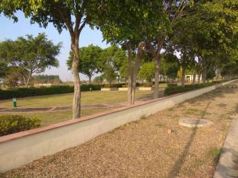 3600 sqft, Plot in Emaar MGF Developers Terraces Villa Sector 108 Mohali, Mohali at Rs. 72.0000 Lacs