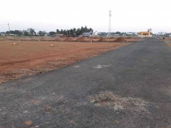 1400 sqft, Plot in Builder Marian Lilly garden Pappampatti Road, Coimbatore at Rs. 2.0000 Lacs