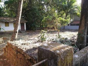 8568 sqft, Plot in Builder Project Cansaulim, Goa at Rs. 78.0000 Lacs