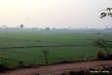 1800 sqft, Plot in Builder Dream City Tappal, Aligarh at Rs. 17.0000 Lacs