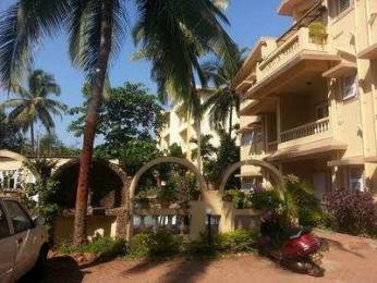 214 sqft, 1 bhk Apartment in Builder Project Candolim, Goa at Rs. 35.0000 Lacs