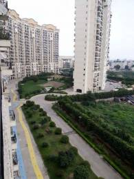 1875 sqft, 3 bhk Apartment in JMD Gardens Sector 33, Gurgaon at Rs. 1.1400 Cr