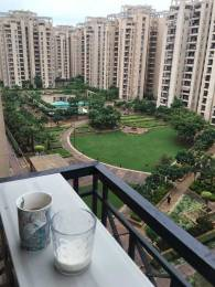 1805 sqft, 3 bhk Apartment in Orchid Petals Sector 49, Gurgaon at Rs. 1.4800 Cr