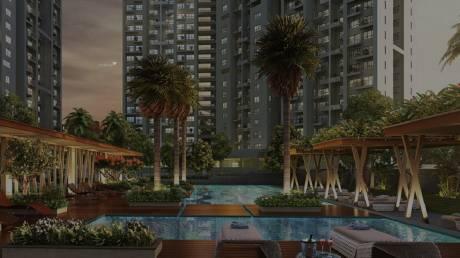 1580 sqft, 3 bhk Apartment in Builder Godrej reuve keshav nagar Keshav Nagar, Pune at Rs. 80.0000 Lacs