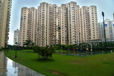 1045 sqft, 2 bhk Apartment in Paramount Floraville Sector 137, Noida at Rs. 55.0000 Lacs
