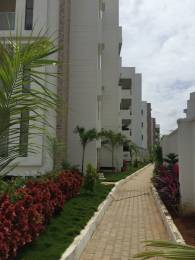 1201 sqft, 2 bhk Apartment in Mythri Arteor Begur, Bangalore at Rs. 49.2410 Lacs