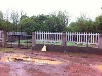 8514 sqft, Plot in Builder Project Chorao, Goa at Rs. 45.0000 Lacs