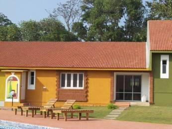 1230 sqft, 2 bhk Apartment in Builder Project Anjuna, Goa at Rs. 75.0000 Lacs
