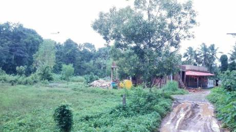 3100 sqft, Plot in Builder DC Converted site for sale in Padil Puttur Dakshina Kannada Puttur Taluk, Mangalore at Rs. 32.0000 Lacs