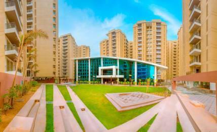 1600 sqft, 3 bhk Apartment in Anukampa Platina Sanganer, Jaipur at Rs. 15000