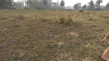 2160 sqft, Plot in Naskar Green Town Joka, Kolkata at Rs. 5.7000 Lacs