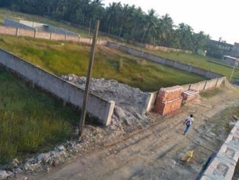 1440 sqft, Plot in Builder Project Amtala, Kolkata at Rs. 5.0000 Lacs
