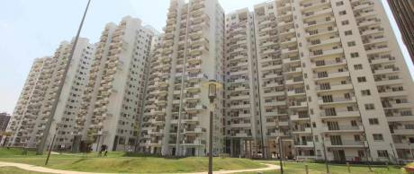 1950 sqft, 3 bhk Apartment in Emaar Palm Drive Sector 66, Gurgaon at Rs. 46000