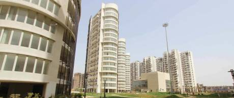 1950 sqft, 3 bhk Apartment in Emaar Palm Drive Sector 66, Gurgaon at Rs. 48000