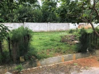 1200 sqft, Plot in Astro Green Park Regency Junnasandra, Bangalore at Rs. 73.2000 Lacs