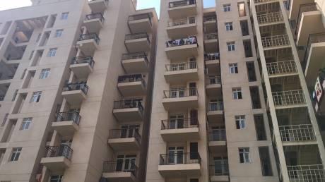 1128 sqft, 3 bhk Apartment in BPTP Park Elite Premium Sector 84, Faridabad at Rs. 58.0000 Lacs
