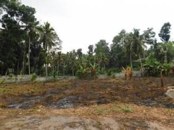 3051 sqft, Plot in Builder Project Vazhayila Mukkola Road, Trivandrum at Rs. 5.2500 Lacs