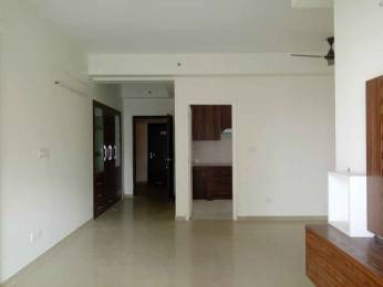 2200 sqft, 3 bhk Apartment in DLF Capital Green III Shivaji Marg, Delhi at Rs. 32000