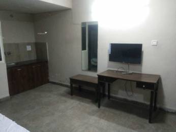 250 sqft, 1 bhk Apartment in Builder Project Vijay Nagar, Indore at Rs. 12000