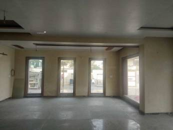 1150 sqft, 2 bhk Apartment in Builder BLOSSOM GREEN APARTMENTS Sector 63, Faridabad at Rs. 36.0000 Lacs