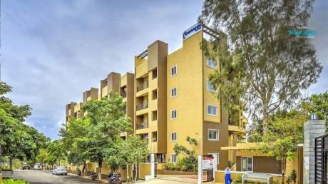 825 sqft, 2 bhk Apartment in Concorde Wind Rush Bommasandra, Bangalore at Rs. 35.0000 Lacs