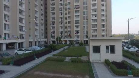1130 sqft, 2 bhk Apartment in SBP Housing Park Mohan Nagar, Dera Bassi at Rs. 8500