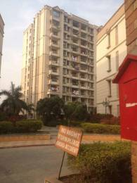 1045 sqft, 2 bhk Apartment in Proview Technocity CHI 5, Greater Noida at Rs. 7500