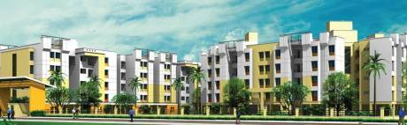 983 sqft, 3 bhk Apartment in Arihant Frangipani Siruseri, Chennai at Rs. 50.0000 Lacs
