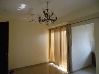 855 sqft, 2 bhk Apartment in Eros Sampoornam Sector 2 Noida Extension, Greater Noida at Rs. 9000