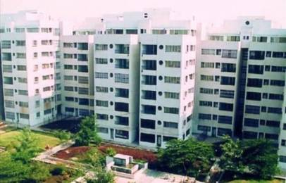 1800 sqft, 3 bhk Apartment in Ramesh Hermes Heritage Phase 2 Yerawada, Pune at Rs. 40000