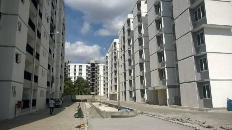 961 sqft, 3 bhk Apartment in VBHC Vaibhava Marsur, Bangalore at Rs. 45.0000 Lacs