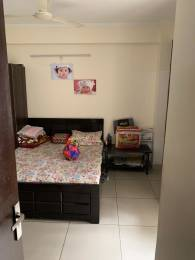 1250 sqft, 3 bhk Apartment in Panchsheel Hynish Sector 1 Noida Extension, Greater Noida at Rs. 10000