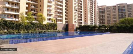 1578 sqft, 3 bhk Apartment in Tulip Violet Sector 69, Gurgaon at Rs. 1.0500 Cr