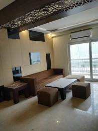 1775 sqft, 3 bhk Apartment in PAN Realtors Pvt. Ltd. Amrapali PAN Oasis Apartments Sector 70, Noida at Rs. 83.0000 Lacs