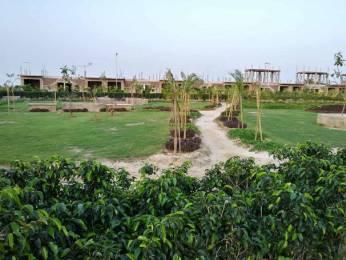 909 sqft, Plot in Builder Forteasia Residency Old Barahi Road Line par Subash Nagar, Bahadurgarh at Rs. 15.1500 Lacs