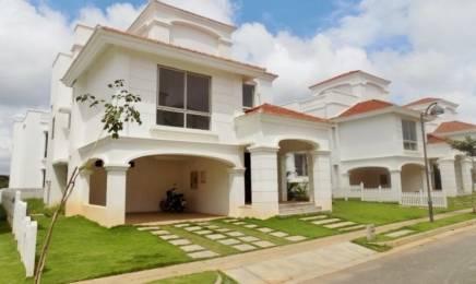 4280 sqft, 4 bhk Villa in Hiranandani Builders Clover Devanahalli, Bangalore at Rs. 3.5000 Cr