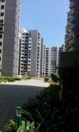 1786 sqft, 3 bhk Apartment in Sobha Chrysanthemum Narayanapura on Hennur Main Road, Bangalore at Rs. 98.0000 Lacs