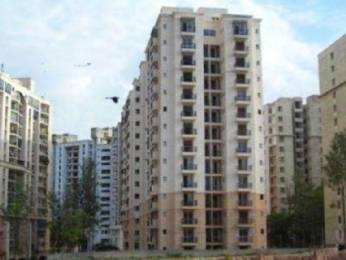 1450 sqft, 2 bhk Apartment in IBC Platinum City Yeshwantpur, Bangalore at Rs. 35000