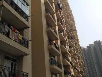 550 sqft, 1 bhk Apartment in Raison Saffron Homes Sector 22 Bhiwadi, Bhiwadi at Rs. 14.0000 Lacs