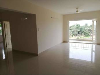 1205 sqft, 2 bhk Apartment in Builder rathna apartments Hoigebail Road, Mangalore at Rs. 15000