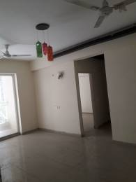 935 sqft, 2 bhk Apartment in Mahagun Mywoods Marvella Phase 2 Noida Extension, Noida at Rs. 8500