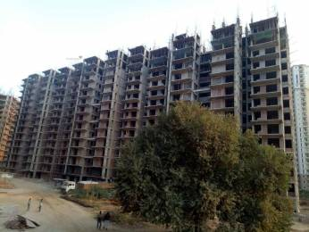 1020 sqft, 2 bhk Apartment in Shree Green Court Sector 90, Gurgaon at Rs. 24.1000 Lacs